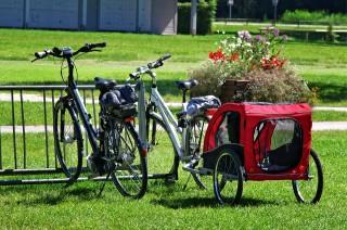 bike-1622183-960-720-187