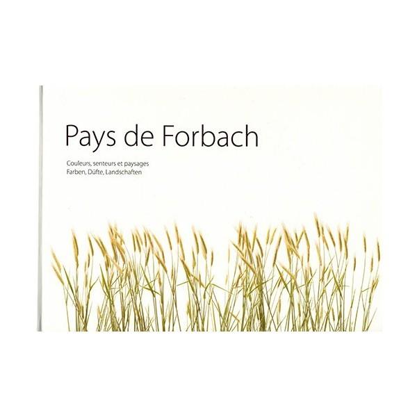 pays-de-forbach-44
